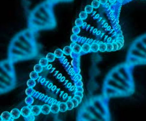 Data Science and Genomics